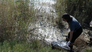 tidal flow art @ aliki eco project - 7