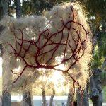 tidal flow art GEOphilosophy Penelope Kouvara 3